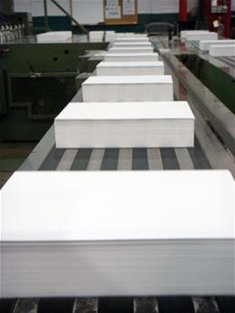 Coated sheets on conveyor