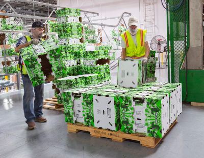 Workers moving boxes on pallet